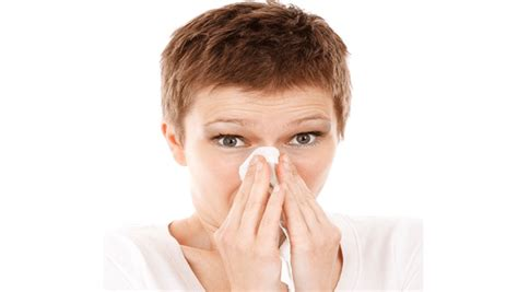 20 home remedies for sinus infection in