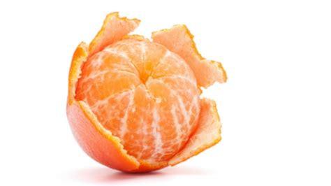 Was Tun Gegen Maulwürfe 2793 by Unterschied Zwischen Mandarine Und Clementine Worlds Of