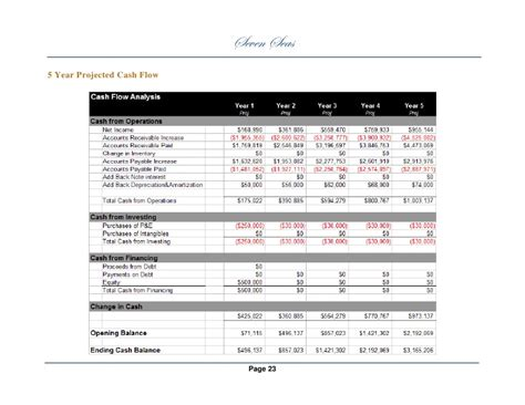 sle projected cash flow business plan sle business plan 2
