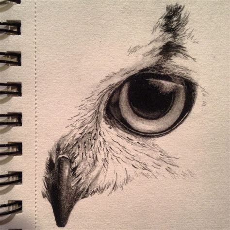 tattoo owl eyes image result for sketches sketch book ideas pinterest