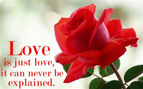 image nice of love nice love images collection for free download
