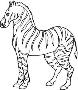 zebra coloring pages free animal zebra coloring sheet to print