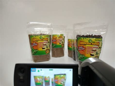 50 Gram Temulawak Kering jangkrik kering pakan burung murah bikin nggacor kemasan 250 gram suryaguna distributor