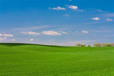 green grass fiels photo  grass image  unsplash