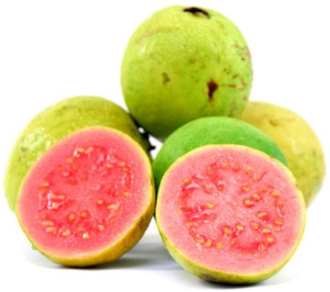 Passion Fruit Plant Diseases - 5 red guava benefits herbal medicine and nutrition