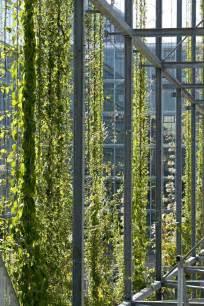 Vertical Garden Facade 25 Best Ideas About Green Facade On Facade