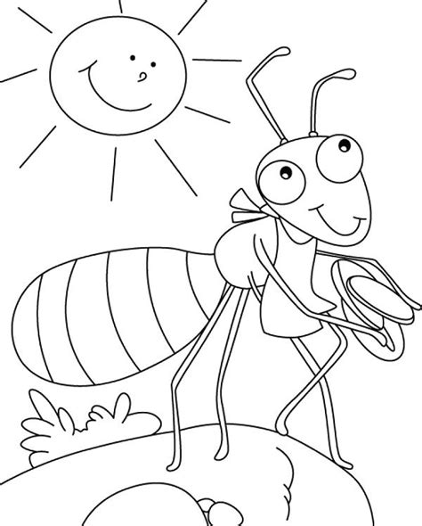 ant farm free colouring pages