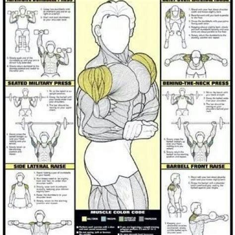 shoulder workout fitness motivation