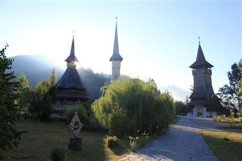 Was Sind Quitten 5246 by Le Maramures