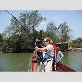 freshwater-stingray