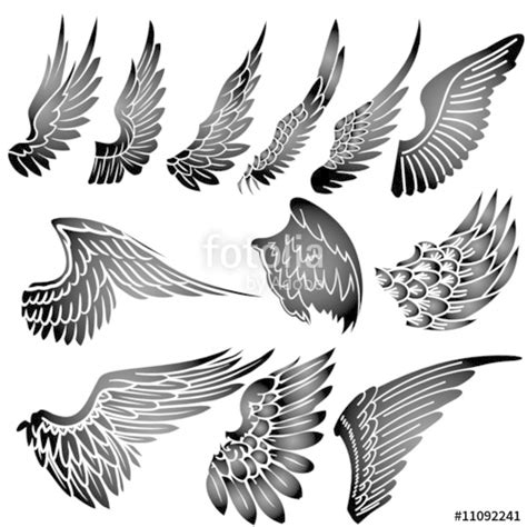 quot wings silhouette vector quot stock image and royalty free