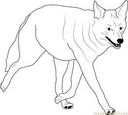 coyote color coyote walking coloring page free coyote coloring pages