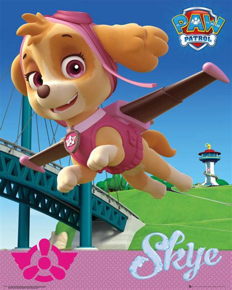 Next Doormat Paw Patrol Skye Poster Sold At Abposters Com