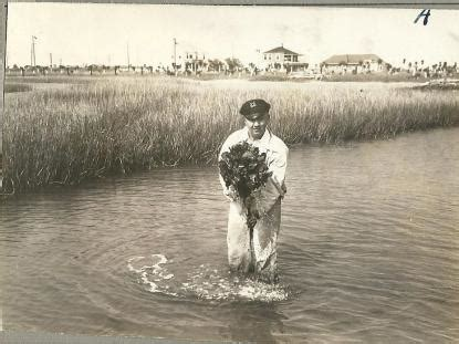 Carteret County Records Poached Oysters No Delicacy For Governor Fowle Nc Dncr
