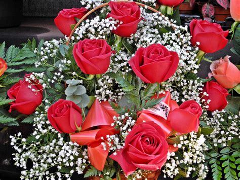 imagenes de rosas varias ramo de rosas rojas fotos de varias