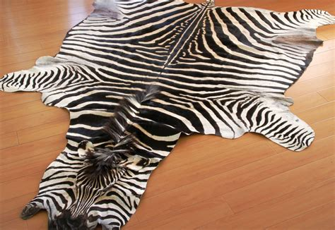 Zebra Hides And Rugs Roje Exotic Leather Zebra Rug