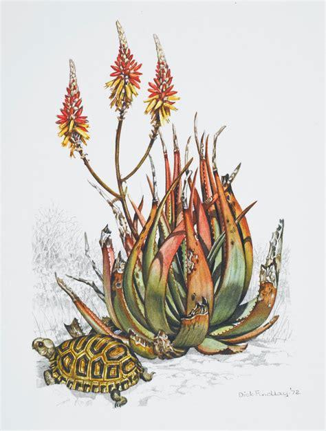 Fendi With Flower Size 28 X 23 Cm Rp 4750000 front cover of union castle line menu depicting aloe