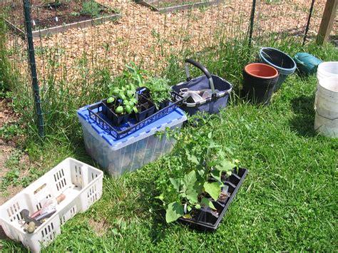 sustainable vegetable garden managing school vegetable gardens who gardens