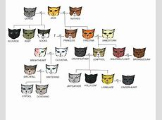 Firestars family tree by Schakalfell on DeviantArt Leafpool And Crowfeather Mating