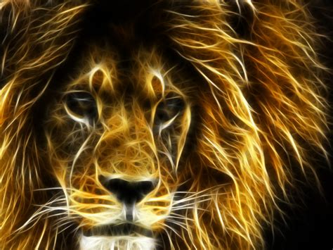 wallpaper 3d lion mashababko screensaver as wallpaper mac lion