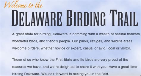 delaware birding trail birds birders birding natural