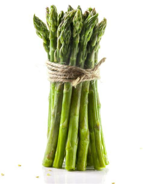 ricette per cucinare gli asparagi dieci ricette con gli asparagi