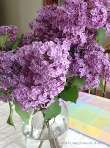 flieder in vase what s in your vase flowers for your home