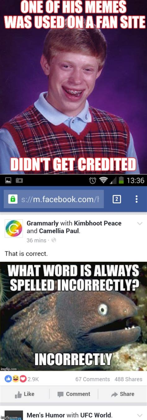 Grammarly Memes - a meme i created then posted to grammarly then they