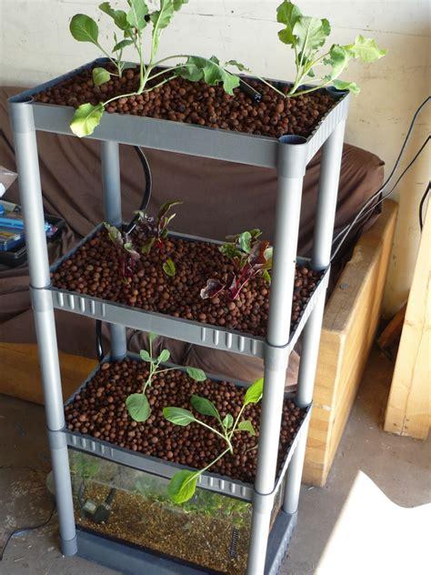 backyard aquaponics kits 12 creative and innovative backyard and indoor diy
