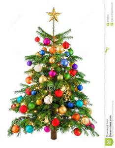 Christmas Trees Decorated In Red - joyfully colorful christmas tree stock images image