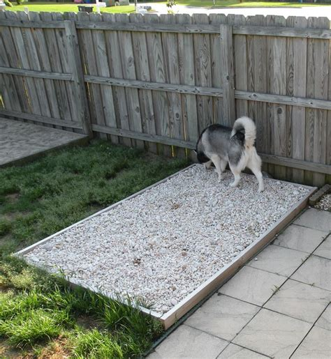 dog poop backyard outdoor potty rock area for the dogs has underground