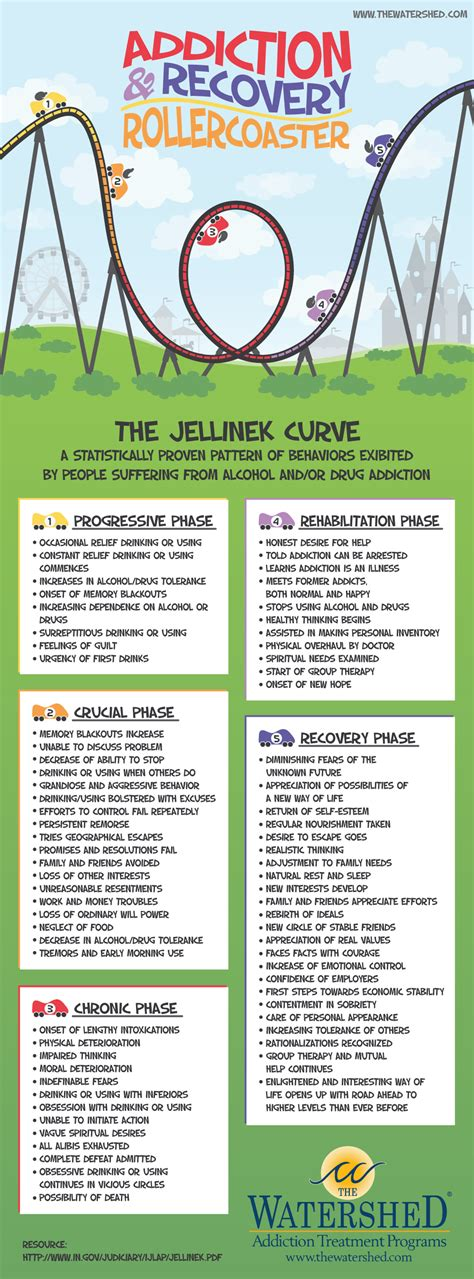 Addiction Detox by Jellinek Curve Infographic Addiction To Recovery
