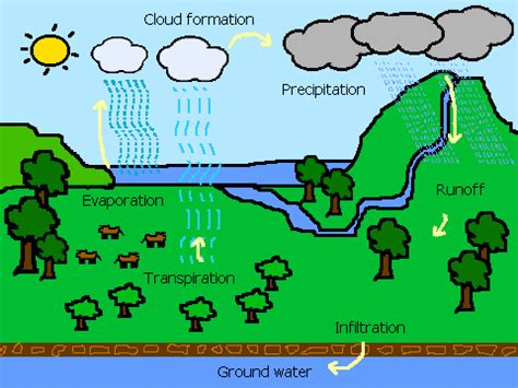 simple water cycle diagram interactive water cycle on scratch