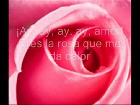 te regalo una rosa la mas hermosa la mas bella de todas juan luis guerra te regalo una rosa letra mix youtube