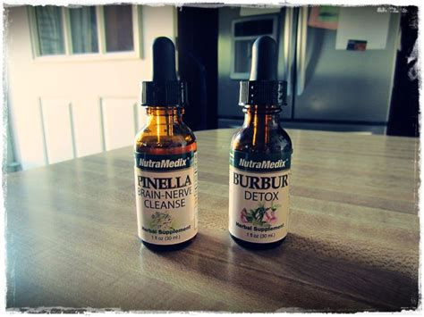 Pinella Brin Detox by The 25 Best Lyme Borreliose Ideas On