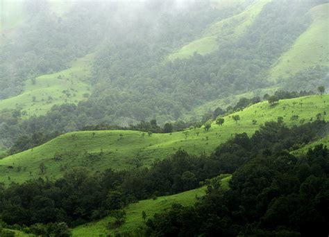 western ghats file shola grasslands and forests in the kudremukh