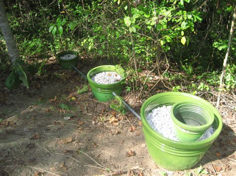 tiny house septic system what to do with greywater from your tiny house the tiny