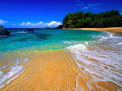 Tropical Top world s top 10 tropical beaches found the world