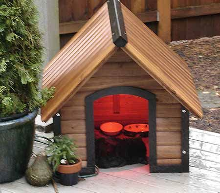 Outdoor Heat L For Cats by How To Add Heat To An Outdoor Critter House Lighthearted