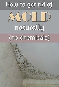 how to get rid of mold around the bathtub daily house cleaning schedule 8 essential daily household