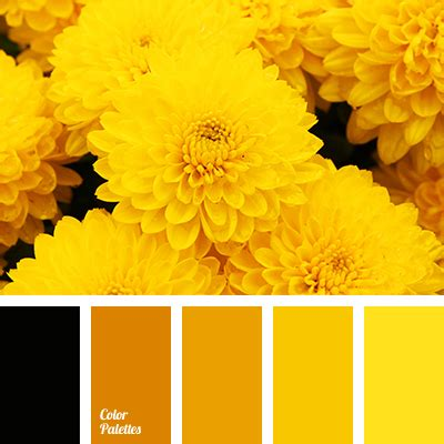 color of honey color palette 2665 colorful inspiration color