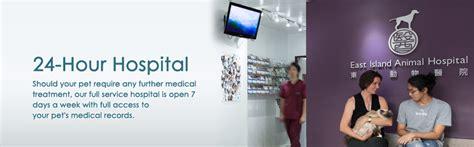 24 hour hospital hk island 24 hour hospital veterinary services in hong kong vet hong kong