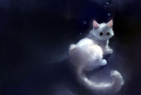 cat wallpaper graphic wallpaper cat graphics art dark bubbles desktop