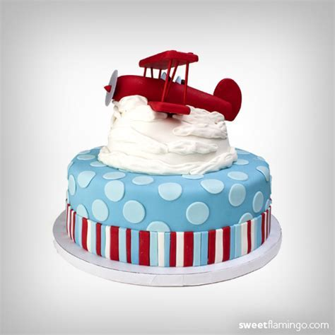 Biplane   Sweet Flamingo Cake Co
