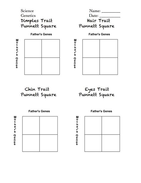 Punnett Squares Worksheet by Punnett Squares Handout Pdf For The Classroom