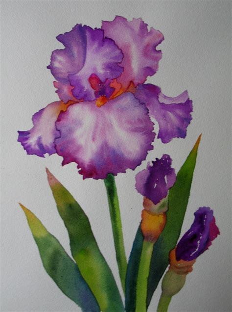 nels everyday painting  tall iris sold iris tall