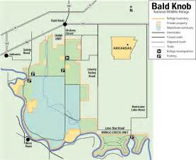 bald knob ar pictures posters news and on your
