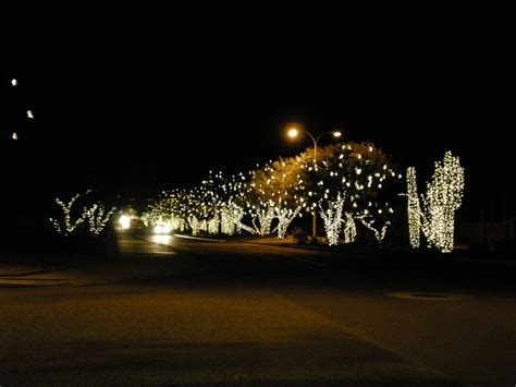 ahwatukee festival of lights ahwatukee lights decoratingspecial com