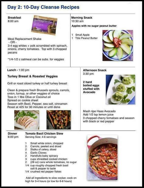 10 Day Detox Diet Chicken Recipes by 100 Cleanse Recipes On Advocare Juice