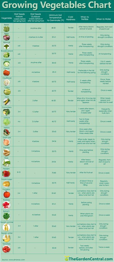 When To Fertilize Vegetable Garden When To Sprout Plant Water And Fertilize Also Tracks